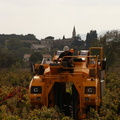 2014 sept 08 vendanges